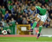 8 October 2016; Josh Magennis of Northern Ireland during the FIFA World Cup Group C Qualifier match between Northern Ireland and San Marino at Windsor Park in Belfast. Photo by Oliver McVeigh/Sportsfile