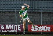 6 November 2016; Marty Kavanagh of St Mullins celebrates after scoring a late goal during the AIB Leinster GAA Hurling Senior Club Championship quarter-final game between Raharney and St Mullins at TEG Cusack Park in Mullingar, Co. Westmeath. Photo by Sam Barnes/Sportsfile