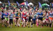 27 November 2016; Competitors in the under 12 race begin their run during the Irish Life Health National Cross Country Championships at the National Sports Campus in Abbotstown, Co Dublin. Photo by Cody Glenn/Sportsfile