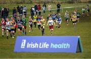 27 November 2016; Under 12 Boys' race finish during the Irish Life Health National Cross Country Championships at the National Sports Campus in Abbotstown, Co Dublin. Photo by Cody Glenn/Sportsfile