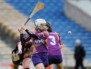 17 April 2011; Mags D'Arcy, Wexford. Irish Daily Star Camogie League, Division 1, Final, Galway v Wexford, Semple Stadium, Thurles, Co. Tipperary. Picture credit: Brian Lawless / SPORTSFILE