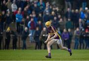 8 January 2017; Damien Reck of Wexford during the Bord na Mona Walsh Cup Group 3 Round 1 match between Wexford and UCD at Páirc Uí Suíochan in Gorey, Co. Wexford. Photo by Ramsey Cardy/Sportsfile
