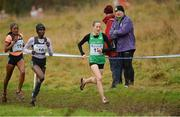 14 January 2017; Fionnuala McCormack, right, of Ireland  leads Caroline Chepkoech Kipkirui of Kenya and Gotytom Gebreslase, left, of Ethiopia during the Senior Womens race at the Antrim International Cross Country at the Greenmount Campus, Stormont, Co. Antrim. Photo by Oliver McVeigh/Sportsfile