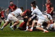 21 January 2017; Conor Murray of Munster goes over the try line but was subsequently adjudged to be held up by the Racing 92 defence during European Rugby Champions Cup Pool 1 Round 6 match between Munster and Racing 92 at Thomond Park in Limerick. Photo by Diarmuid Greene/Sportsfile