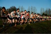 22 January 2017; A general view of the start of the Intermediate men's race during the Irish Life Health Intermediate & Juvenile Inter Club Relay at Palace Grounds in Tuam, Co.Galway.  Photo by Sam Barnes/Sportsfile