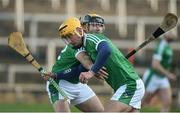 22 January 2017; Tom Morrissey and James Ryan of Limerick warm up before the Co-Op Superstores Munster Senior Hurling League Round 4 match between Limerick and Kerry at the Gaelic Grounds in Limerick. Photo by Diarmuid Greene/Sportsfile