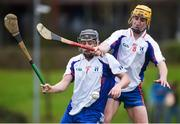 24 January 2017; Alan Flynn and Colm Galvin of Mary Immaculate College Limerick in action during the Independent.ie HE Fitzgibbon Cup Group A Round 1 match between Mary Immaculate College Limerick and GMIT at the MICL Grounds in Limerick. Photo by Diarmuid Greene/Sportsfile