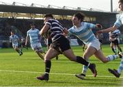 13 February 2017; Zac Vaughan of Terenure College goes over to score his sides first try despite the efforts of Tom Roche of Blackrock College during the Blackrock College and Terenure College Bank of Ireland Leinster Schools Senior Cup second round match at Donnybrook Stadium, Donnybrook, in Dublin. Photo by David Maher/Sportsfile