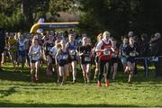 15 February 2017; A general view of the Minor Girls final 1500m race during the Irish Life Health Leinster Schools Cross Country at Santry Demesne in Santry, Co Dublin. Photo by David Maher/Sportsfile