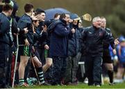 24 February 2017; Limerick IT manager Davy Fitzgerald during the Independent.ie HE GAA Fitzgibbon Cup semi-final meeting between Mary Immaculate College Limerick and Limerick IT at Dangan, in Galway. Photo by Piaras Ó Mídheach/Sportsfile