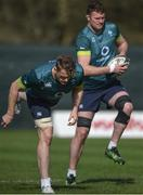 14 March 2017; Jamie Heaslip, left, and Donnacha Ryan of Ireland during squad training at Carton House in Maynooth, Co Kildare. Photo by David Fitzgerald/Sportsfile
