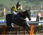15 March 2017; Willoughby Court, with David Bass up, jump the last on their way to winning the Neptune Investment Management Novices' Hurdle during the Cheltenham Racing Festival at Prestbury Park in Cheltenham, England. Photo by Cody Glenn/Sportsfile