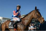15 March 2017; Noel Fehily and Special Tiara after winning the Betway Queen Mother Champion Chase during the Cheltenham Racing Festival at Prestbury Park in Cheltenham, England. Photo by Seb Daly/Sportsfile