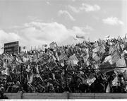 25 September 1977; Armagh supporters on the Canal End. All Ireland GAA Senior Football Championship Final, Dublin v Armagh, Croke Park, Dublin. Picture credit: Connolly Collection  / SPORTSFILE