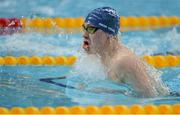 7 April 2017; Jack Angus of Ards Swim Club, Co. Down, on his way to winning the Junior Men's 100m Breaststroke Final during the 2017 Irish Open Swimming Championships at the National Aquatic Centre in Dublin. Photo by Sam Barnes/Sportsfile