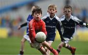 11April 2017; A general view of action between Maryland Tang GAA Club, Co. Westmeath, and Eire Og GAA Club, Co. Carlow during the The Go Games Provincial Days in partnership with Littlewoods Ireland Day 2 at Croke Park in Dublin. Photo by David Maher/Sportsfile