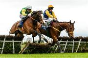 16 April 2017; Tudor City, left, with Davy Russell up, jump the last ahead of Runforbob, with Sean Flanagan up, who fell over the last and did not finish, on their way to winning the Cusack Hotel Group Maiden Hurdle during the Fairyhouse Easter Festival at Fairyhouse Racecourse in Ratoath, Co Meath. Photo by Cody Glenn/Sportsfile