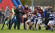 16 April 2017; Action between Tullow RFC and Skerries RFC during the Bank of Ireland Minis at half time at the the Bank of Ireland Leinster Provincial Towns Cup Final match between Skerries RFC 2nd XV and Tullow RFC at the Showgrounds in Athy, Co Kildare. Photo by Matt Browne/Sportsfile