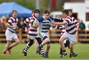 16 April 2017; Action between Athy RFC and Tullow RFC during the Bank of Ireland Minis at half time at the the Bank of Ireland Leinster Provincial Towns Cup Final match between Skerries RFC 2nd XV and Tullow RFC at the Showgrounds in Athy, Co Kildare. Photo by Matt Browne/Sportsfile