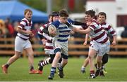 16 April 2017; Action between Athy RFC and Tullow RFC during the Bank of Ireland Minis at half time at the the Bank of Ireland Leinster Provincial Towns Cup Final match between Skerries RFC 2nd XV and Tullow RFC at the Showgrounds in Athy, Co. Kildare. Photo by Matt Browne/Sportsfile