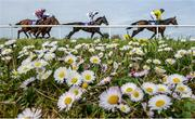 18 April 2017; A general view of the field on their first time round in the Lilly Bain Bathroom and Tiles Supporting Newry RFC Maiden Hurdle during the Fairyhouse Easter Festival at Fairyhouse Racecourse in Ratoath, Co Meath. Photo by Cody Glenn/Sportsfile