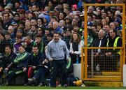 16 April 2017; Wexford manager Davy Fitzgerald during the Allianz Hurling League Division 1 Semi-Final match between Wexford and Tipperary at Nowlan Park in Kilkenny. Photo by Ramsey Cardy/Sportsfile