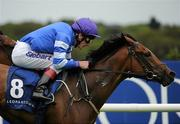 3 September 2011; Oh So Lucy, with Johnny Murtagh up, in action during The Irish Stallion Farms European Breeders Fund Fillies Maiden. Horse Racing at Leopardstown, Leopardstown Race Course, Dublin. Picture credit: Ray McManus / SPORTSFILE