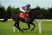 3 September 2011; So You Think, with Seamus ( Shamie ) Heffernan up, canters to the start for The Red Mills Irish Champion Stakes. Horse Racing at Leopardstown, Leopardstown Race Course, Dublin. Picture credit: Ray McManus / SPORTSFILE