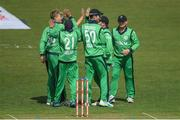 14 May 2017; Ireland players congratulate Barry McCarthy, left, after taking the wicket of Tom Latham of New Zealand during the One Day International match between Ireland and New Zealand at Malahide Cricket Club in Dublin. Photo by Brendan Moran/Sportsfile