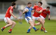 21 May 2017; Seánie Furlong of Wicklow in action against Patrick Reilly, left, and Darren McMahon of Louth during the Leinster GAA Football Senior Championship Round 1 match between Louth and Wicklow at Parnell Park in Dublin. Photo by Piaras Ó Mídheach/Sportsfile