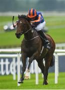 27 May 2017; Churchill, with Ryan Moore up, on their way to winning the Tattersalls Irish 2,000 Guineas during the Tattersalls Irish Guineas Festival at The Curragh, Co Kildare. Photo by Cody Glenn/Sportsfile