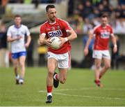 27 May 2017; Mark Collins of Cork during the Munster GAA Football Senior Championship Quarter-Final match between Waterford and Cork at Fraher Field in Dungarvan, Co Waterford. Photo by Matt Browne/Sportsfile