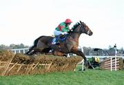 28 December 2011; Star of Aragon, with Cathal Landers up, jumps the last on their way to winning the Madigans Maiden Hurdle. Leopardstown Christmas Racing Festival 2011, Leopardstown Racecourse, Leopardstown, Dublin. Picture credit: Matt Browne / SPORTSFILE