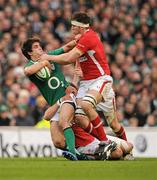 5 February 2012; Conor Murray, Ireland, is tackled by Jamie Roberts and Ryan Jones, right, Wales. RBS Six Nations Rugby Championship, Ireland v Wales, Aviva Stadium, Lansdowne Road, Dublin. Picture credit: Stephen McCarthy / SPORTSFILE