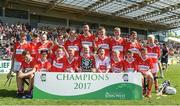 18 June 2017; The Feathar-St Mogues, Co Wexford team after the Division 5 Final between eathar-St Mogues, Co Wexford and Horsewood, Co. Wexford at the John West Féile na nGael national competition which took place this weekend across Carlow, Kilkenny and Waterford. This is the second year that the Féile na nGael and Féile Peile na nÓg have been sponsored by John West, one of the world's leading suppliers of fish. The competition gives up-and-coming GAA superstars the chance to participate and play in their respective Féile tournament, at a level which suits their age, skills and strengths. Photo by Matt Browne/Sportsfile