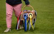 10 August 2017; Ribbons for the top finishers of The Speed Derby by The Clayton Hotel Ballsbridge at the Dublin Horse Show at the RDS in Ballsbridge, Dublin. Photo by Cody Glenn/Sportsfile