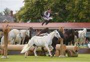 12 August 2017; Lorenzo - The Flying Frenchman performs during the Dublin International Horse Show at RDS, Ballsbridge in Dublin. Photo by Cody Glenn/Sportsfile