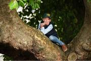 12 August 2017; A young spectator finds a vantage point from a tree for the Land Rover Puissance during the Dublin International Horse Show at RDS, Ballsbridge in Dublin. Photo by Cody Glenn/Sportsfile
