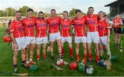 15 August 2017; Wexford attendees, from left, Martin Storey, Lee Chin, Larry O'Gorman, Matthew O'Hanlon, Mikey Fogarty, Conor McDonald, David Fogarty and Jamie Codd at the sixth annual Hurling for Cancer Research game, a celebrity hurling match in aid of the Irish Cancer Society in St Conleth's Park, Newbridge. The event, organised by legendary racehorse trainer Jim Bolger and National Hunt jockey Davy Russell, has raised €540,000 to date to fund the Irish Cancer Society's innovative cancer research projects. St. Conleth's Park, Newbridge, Co Kildare. Photo by Piaras Ó Mídheach/Sportsfile