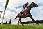 19 August 2017; Order of St. George, with Ryan Moore up, on their way to winning the Comer Group International Irish St Leger Trial Stakes during the Paddy Power Raceday at the Curragh Racecourse in Kildare. Photo by Eóin Noonan/Sportsfile