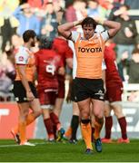 9 September 2017; Francois Venter of Cheetahs reacts after his side conceded a try during the Guinness PRO14 Round 2 match between Munster and Cheetahs at Thomond Park in Limerick. Photo by Diarmuid Greene/Sportsfile