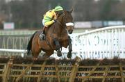 28 December 2002; Some Buzz with Gary Hutchinson up, jumps the last on their way to winning the Powers Gold Label Championship Handicap Hurdle at Leopardstown, Co. Dublin. Horse Racing. Picture credit; Matt Browne / SPORTSFILE *EDI*