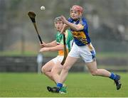 13 January 2013; Sean Curran, Tipperary, in action against Sean Ryan, Offaly. Inter-County Challenge Match, Tipperary v Offaly, Templemore, Co. Tipperary. Picture credit: Matt Browne / SPORTSFILE
