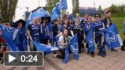 Leinster fans at Zebre v Leinster