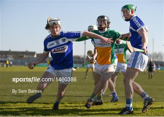 Offaly v Laois - Allianz Hurling League Division 1B Round 4