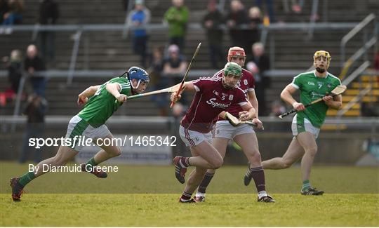 Galway v Limerick - Allianz Hurling League Division 1B Round 5