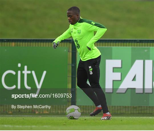 Republic of Ireland Training Session & Press Conference