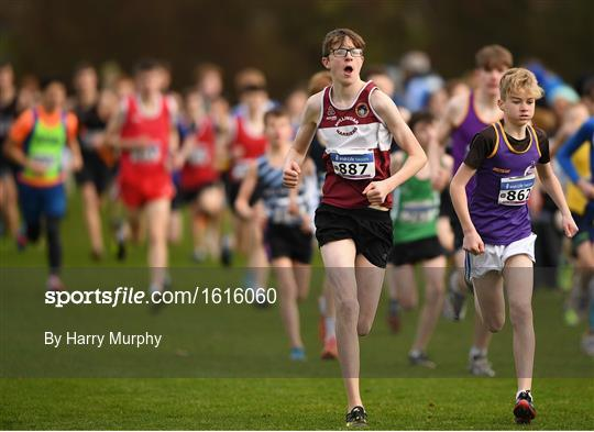 Irish Life Health National Senior & Junior Cross Country Championships