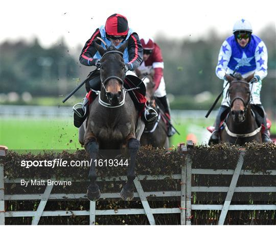 Fairyhouse Winter Festival - Sunday