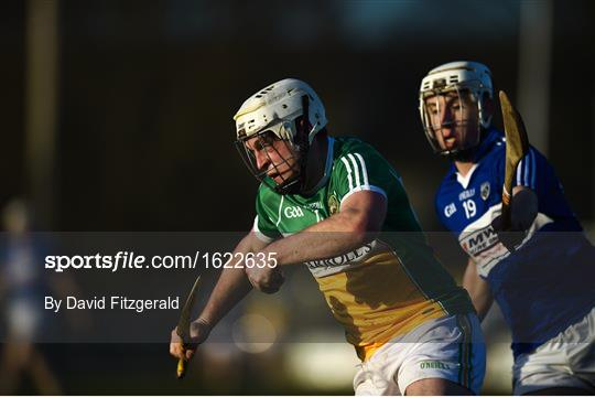 Offaly v Laois - Walsh Cup Round 1